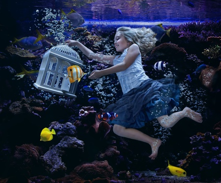 fishtank: an attractive girl swimming in a fishtank with tropical fish all around her, she is holding a birdcage as a fish swims out of it.