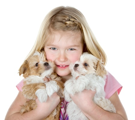 a girl holding two small fluffy puppies close to her face, isolated on a white background