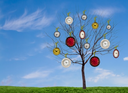 Several decorative clocks hanging from a bare tree on a grassy hill with a blue sky as a background