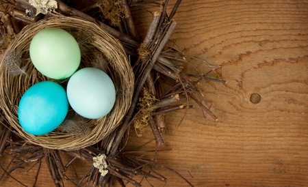 Easter Eggs in shades of blue in a nest on a wooden background, room for copy space. photo