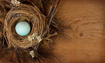 A Singel blue egg in a nest with a wooden background, room for copy space.