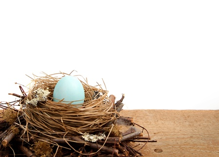 Single blue easter egg in a nest with a white background, isolated and room for copy space photo