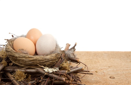 Brown eggs in a nest isolated with a white background, room for copy space photo