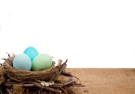 Easter Eggs in de kleuren blauw in een nest geïsoleerd op een witte achtergrond, ruimte voor kopie ruimte. Stockfoto