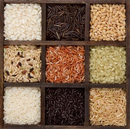 Rice nine varieties in printers box, jasmine, wild, white, pearl, forbidden, madagascar, jade, arborio,basmati, and barley Stock Photo - 12503736