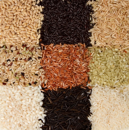 Rice background, nine varieties in a checkerboard pattern, jasmine, wild, white, pearl, forbidden, madagascar, jade, arborio,basmati, and barley Stock Photo - 12503733
