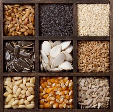 Assorted edible seeds arranged in a printers box