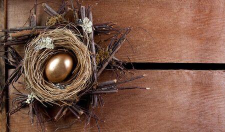 retirement nest egg: A golden nest  egg, on wooden planks as a background