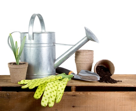 watering pot: Assorted gardening tools isolated on a white background Stock Photo