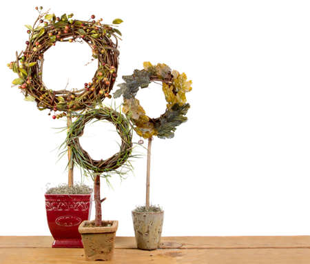 evergreen wreaths: Three ornamental topiaries on a plank, Isolated on a white background