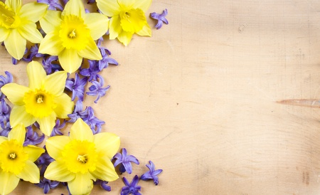 Hyacinth and dofodil on a wooden background, floral still life photo