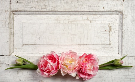 Flowers on a paneled vintage door, (pink tulips or rose like flowers) photo