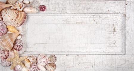 Conchas marinas dispuestas en una puerta de la vendimia, anuncio, tarjeta o invitación Foto de archivo - 13498163