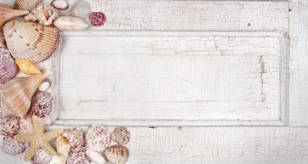 Sea shells arranged on a vintage door, announcement, card or invitation photo