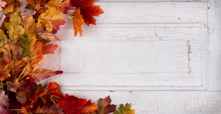 crackle: fall leaves on a a vintage or antique paneled door