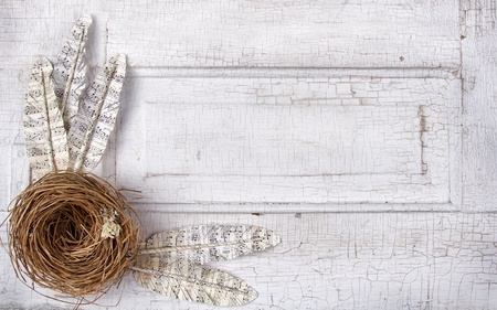 sheet music: Paper feathers made of sheet music and nest on a vintage or antique door panel Stock Photo
