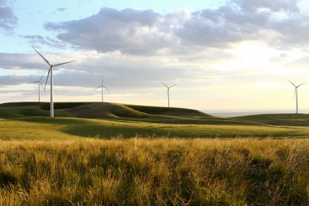 Windmill farm in grassy hillside at sunset Stock Photo