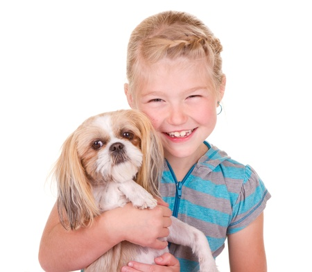 Girl holding her pet dog shih tzu isolated on white photo