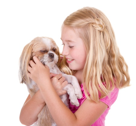 shih tzu: A girl holding and petting her shih tzu dog Stock Photo