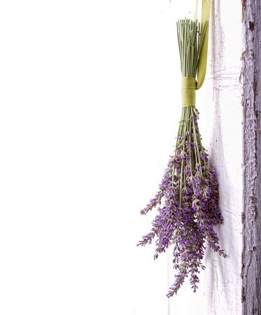 fiori di lavanda: Lavendar appeso a una vecchia annata porta, spazio per lo spazio della copia