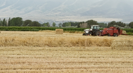 industrial park: A tractor havesting wheat into bails of straw Stock Photo
