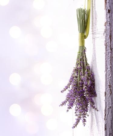 fiori di lavanda: Lavendar appeso a una vecchia annata porta, spazio per copia spazio Archivio Fotografico