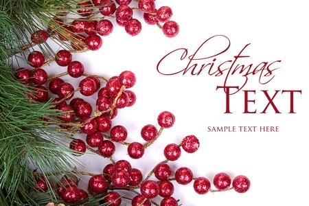 christmas berries: Rami di pino con bacche di Natale su bianco