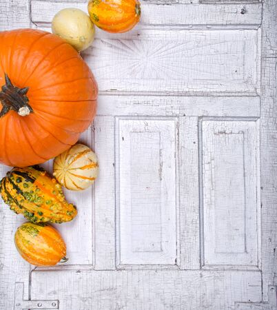 Pumpkins and gourds sitting on an antiique cracked door panel