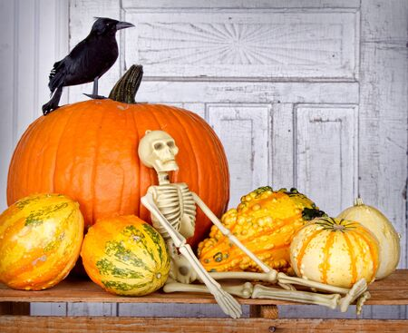 Halloween still life with skeleton, black bird and pumpkin on a wooden crate Stock Photo