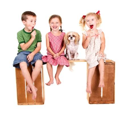 Tres ni�os y un perro sentado en un banco comiendo lolli pop, aislado en blanco Foto de archivo - 15912295