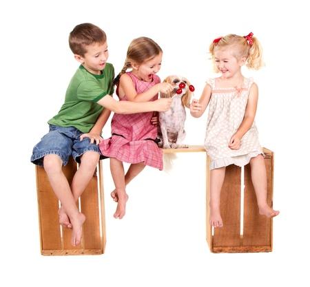 Drie kinderen voeden van een hond een lolli pop op een bankje, geïsoleerd op wit Stockfoto