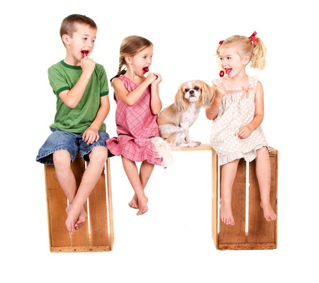 Three kids sitting and a dog on a bench eating lolli pops, isolated on white