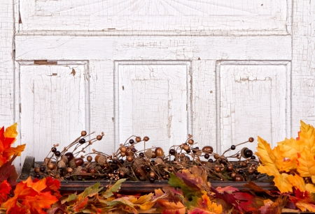 Autumn still life with acorns and leaves with wooden panel for background photo