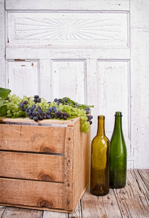 Grapes on vine sitting on wooden crate with empty wine bottles photo