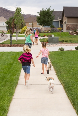 Group of children or teens waking dogs in a neighborhood photo