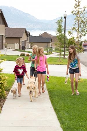 Group of children or teens waking dogs in a neighborhood Foto de archivo