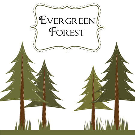 campsite: Forest template with pine trees , translucent background,  12x12 square layout for scrapbooking