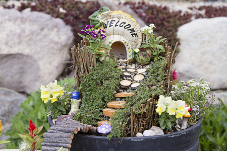 fairy toadstool: Fairy garden with a house made of a mushroom with a path and stairs in a flower pot
