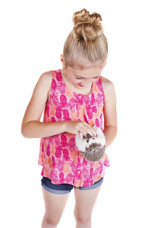 A young girl petting the stomach of her pet hedgehog on an isolated white background