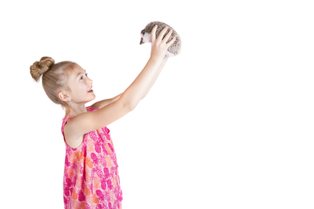 A young girl holding her pet hedgehog up in the air on an isolated white background