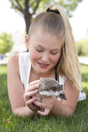 Young teen girl holding a pet hedgehog outside in the summer Foto de archivo