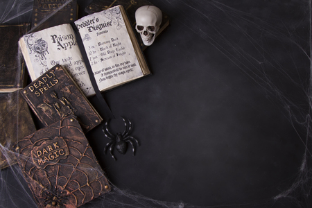 Old spell books with spider webs and a skull on a chalkboard background for Halloween.  Foto de archivo