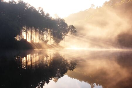 Reflection Of The Winter Wild In The Lake, North Of Thailand Stock Photo - 7280415