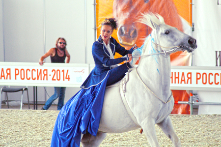 rotates: International Equestrian Exhibition During the show. Woman jockey in a dark blue dress on a white horse Editorial