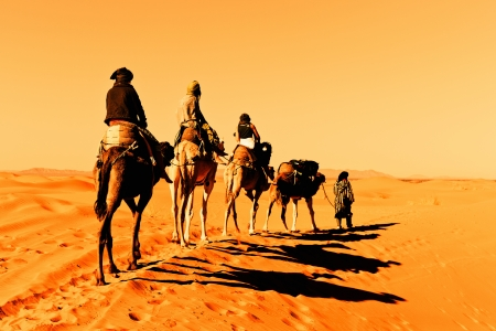 Camel Caravan in de Sahara