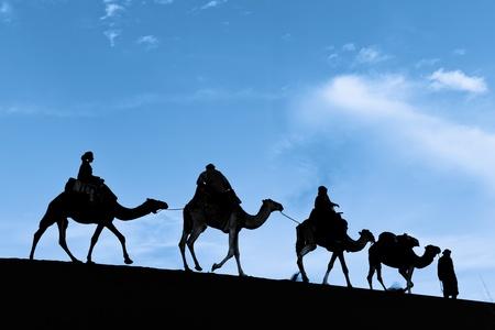 Silhouette of Camel Caravan in the Sahara Desert photo