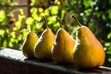pears Stok Fotoğraf