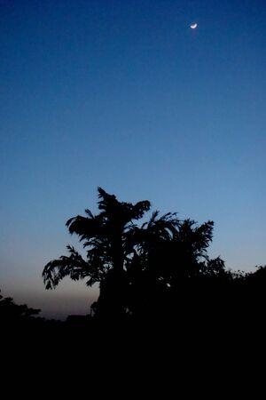 hindues: Oscura noche Dehradun