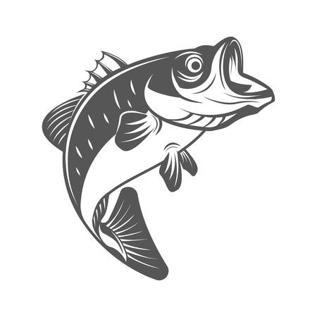 Bajo de pescado ilustración vectorial en estilo vintage monocromo. Elementos de diseño para el logotipo, la etiqueta, el emblema. Logos