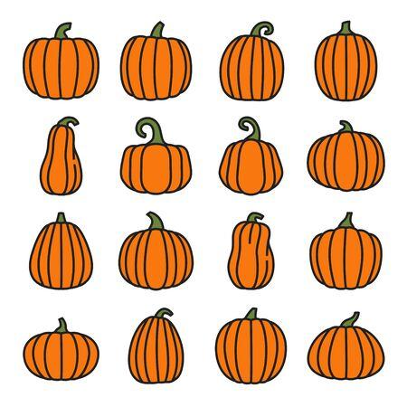 Pumpkin line color icons set. Organic food. Vector
